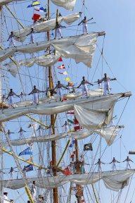 Tall ships races Aarhus