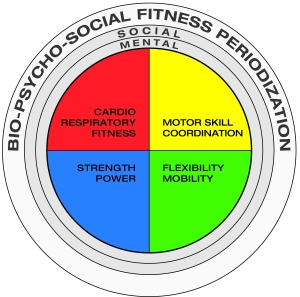 Fitness Periodization model
