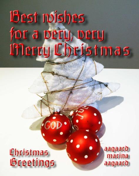 Merry Christmas Christmas card photo Marina Aagaard