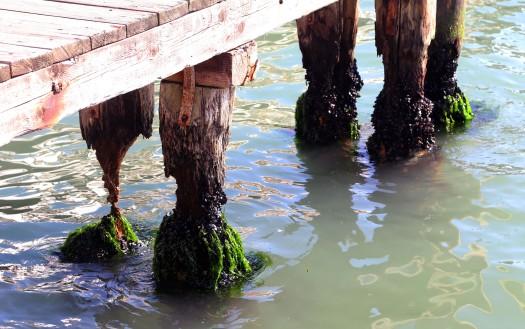Venedig forfald foto Marina Aagaard fitness blog